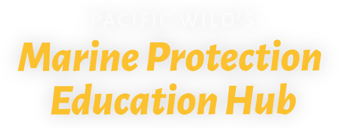 Marine Protection Education Hub