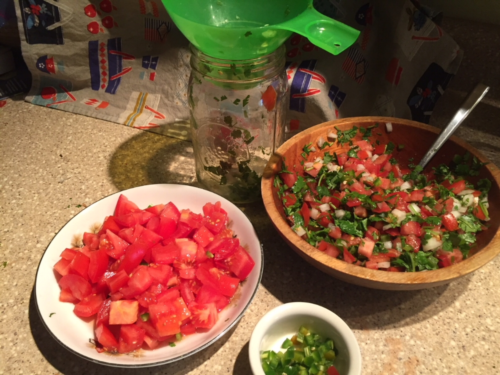 Picco de Gallo is a mildly spicy fresh condiment that is the colors of the Mexican Flag.