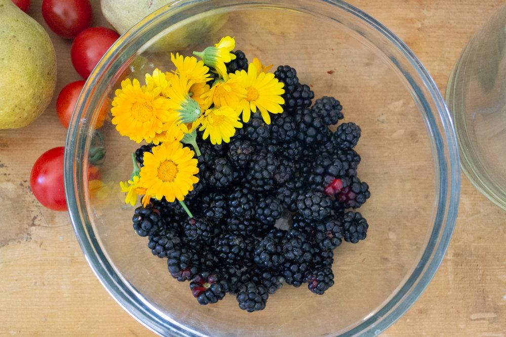 berries and flowers-1.jpg