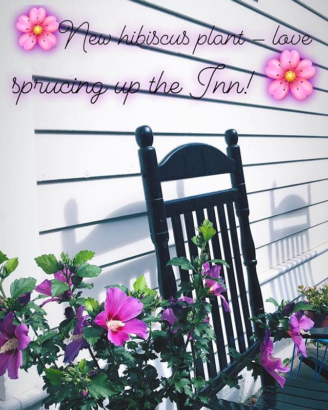 Boutique hotels are all about the details, and Moonriver Inn is no exception 🌸 . . Even though the Inn is only 4 guest rooms, you'll have a private, comfortable stay in a river town, with everything you need within a short walk! . . Online booking is up and running (again)! Please check out the website link in the bio, check availability and book your visit soon. Friends and family get a 15% discount - DM me for the code 🌜✨ . . #narrowsburg #moonriverinn #boutiquehotel #summer2018 #hisbiscusflowers #rockingchairs #countrylife #weekendgetaway #sullivancatskills #catskills #delawareriver #rivertown