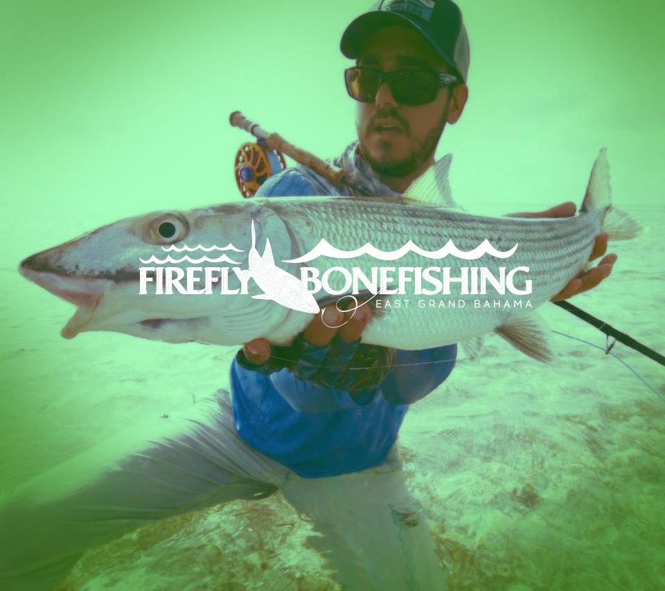 Firefly bonefishing grand bahama bahamas bonefishing at its best solutioingenieria Images