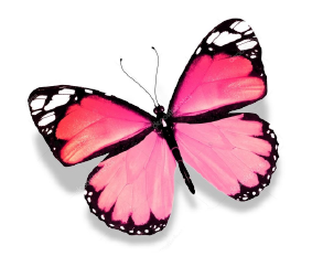 BW - Butterfly 2.png
