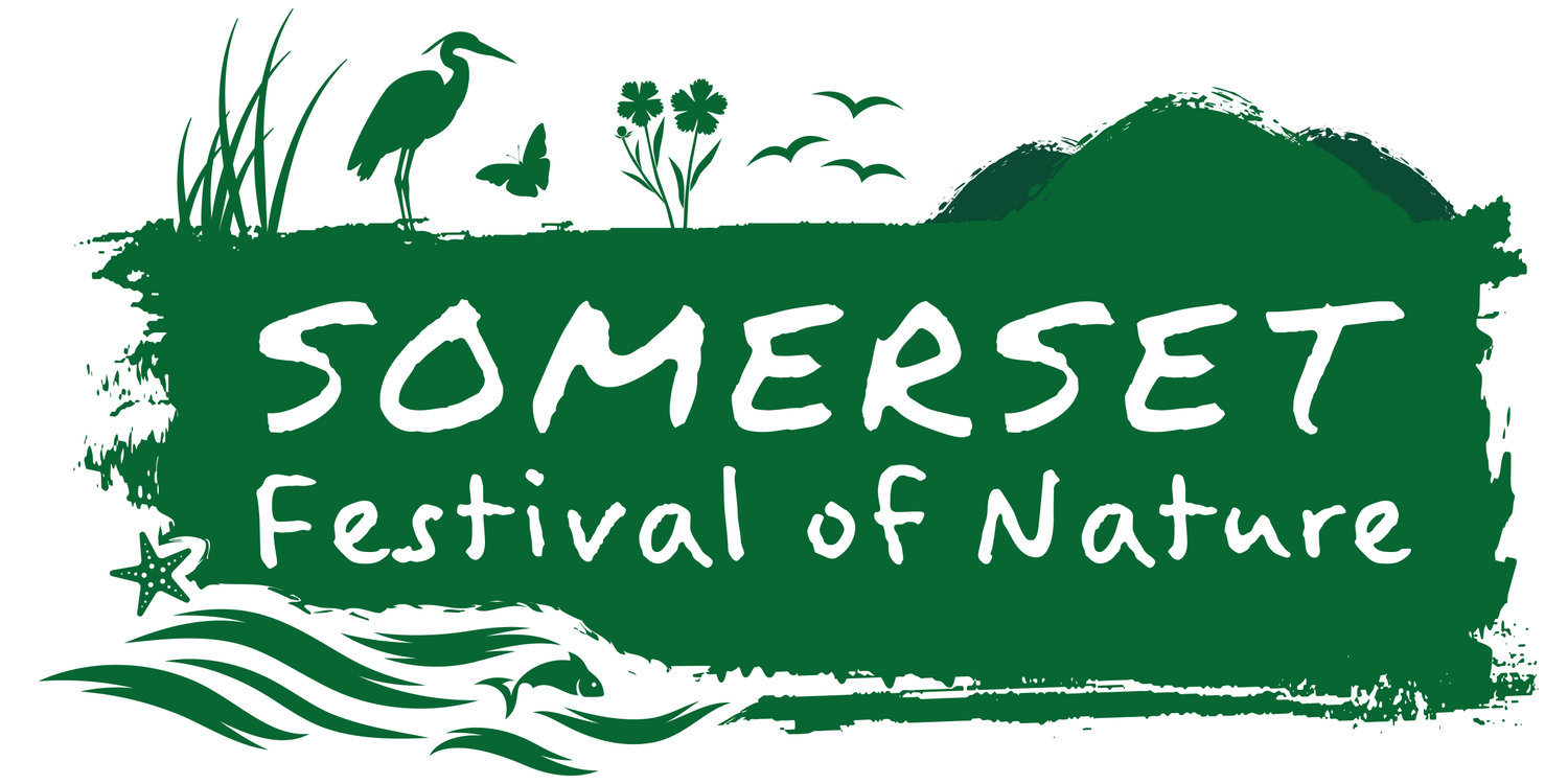 Somerset Festival of Nature