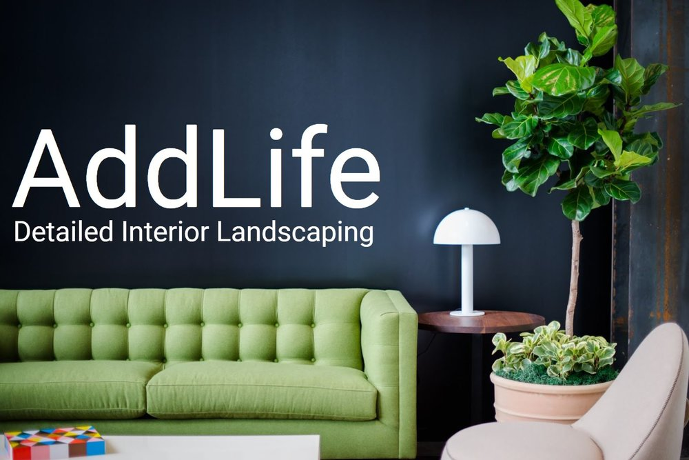AddLife  - A detailed Interior Landscaping.JPG