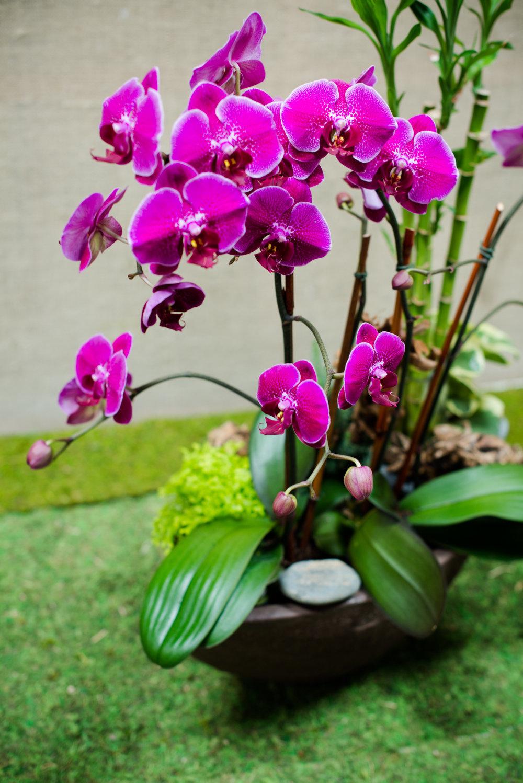 AddLife-Floral-Bowls-017.jpg