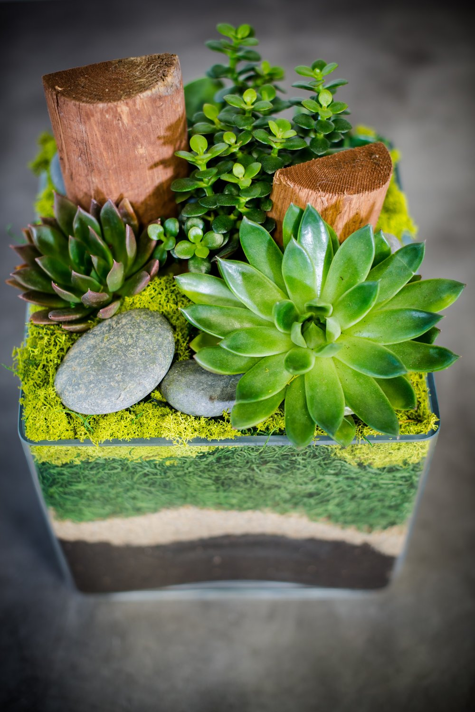 AddLife-Floral-Bowls-003.jpg