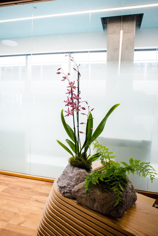 AddLife-Floral-Bowls-016.jpg