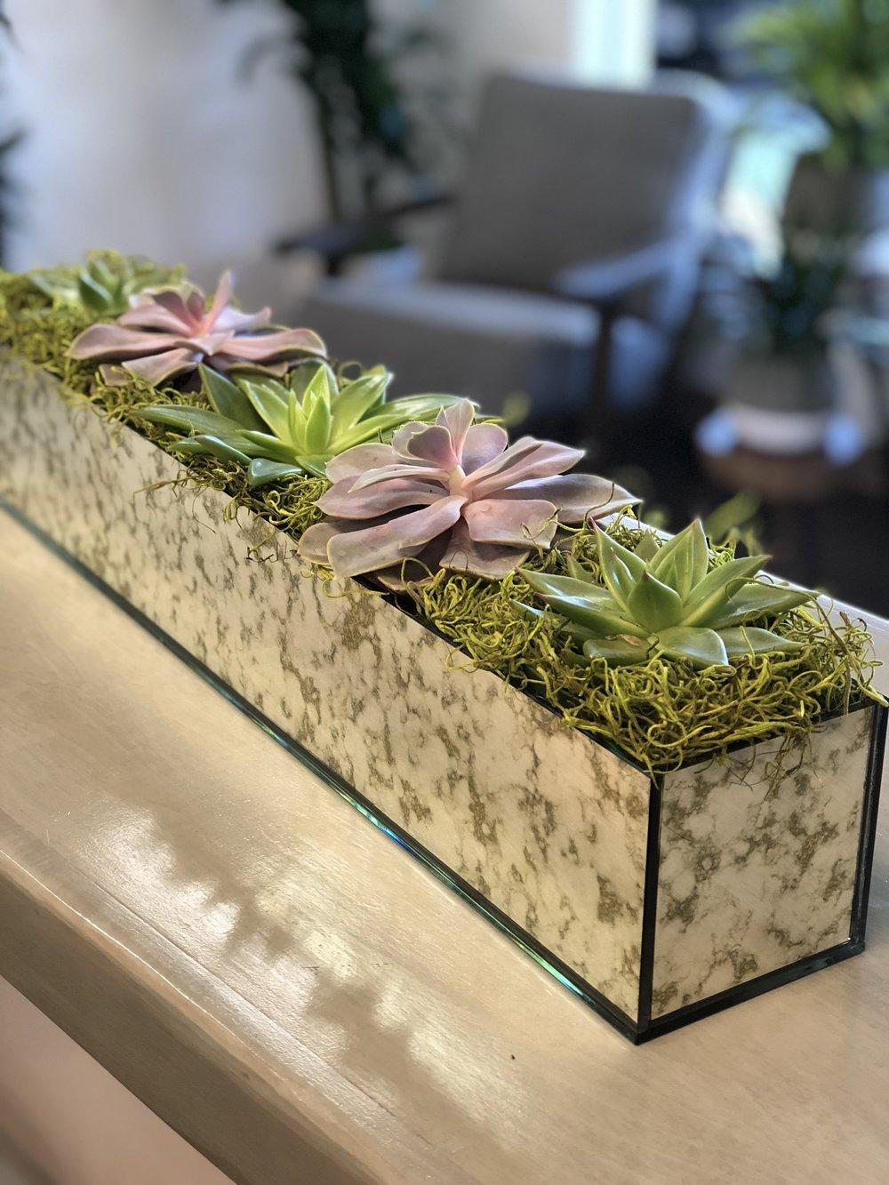 AD Mirror planter.jpg