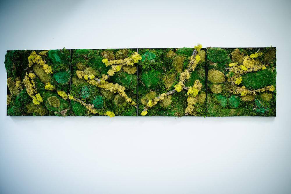 AddLife-Moss-Walls-003.jpg