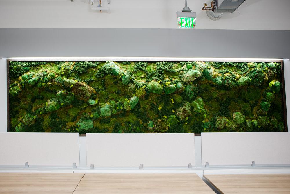 AddLife-Moss-Walls-007.jpg