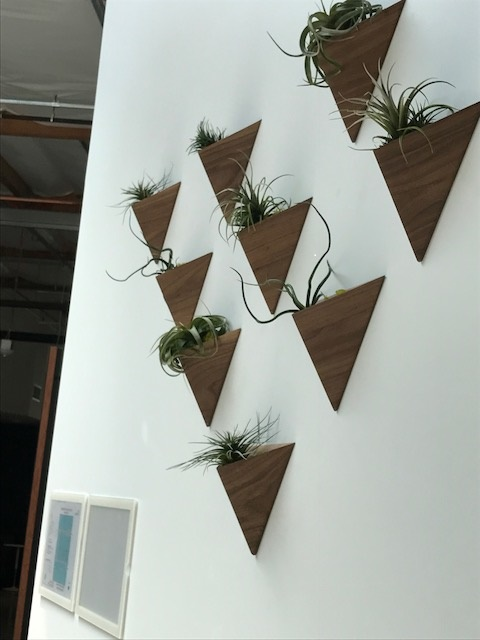 Wooden Triangular Planters.jpg
