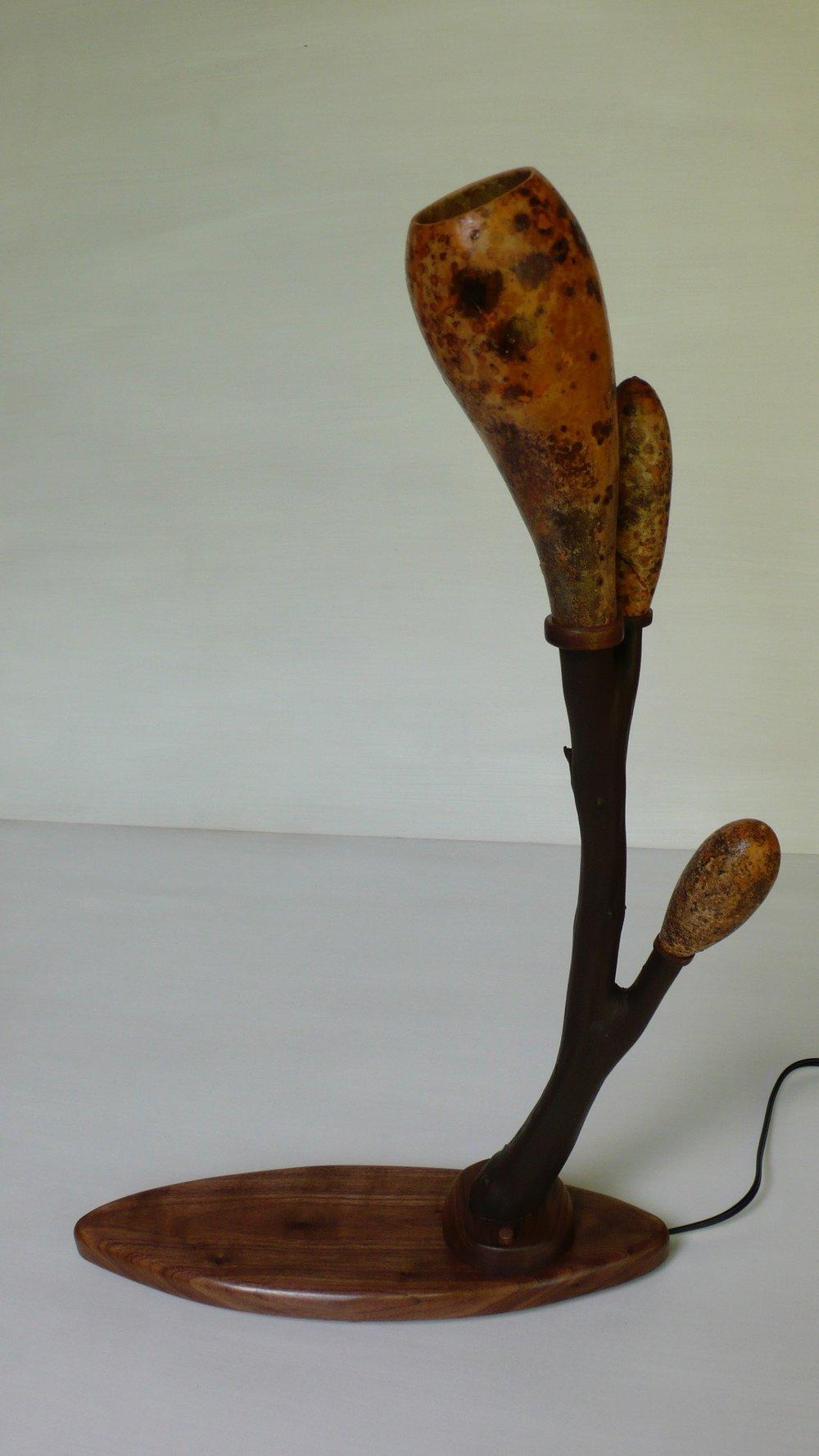 Fire Tree Gourd Lamp