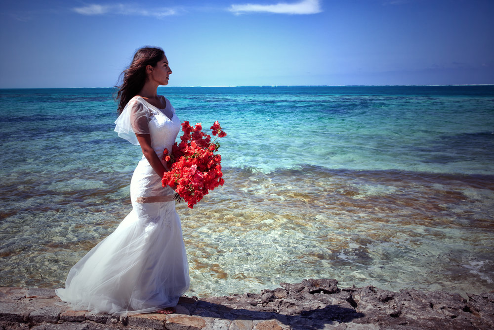 beautiful waterfront beach side wedding photoshoot lace sleeves wedding dress mermaid fit wedding dress under $1000