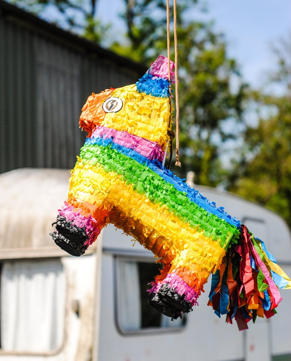 summer fun wedding games pinata