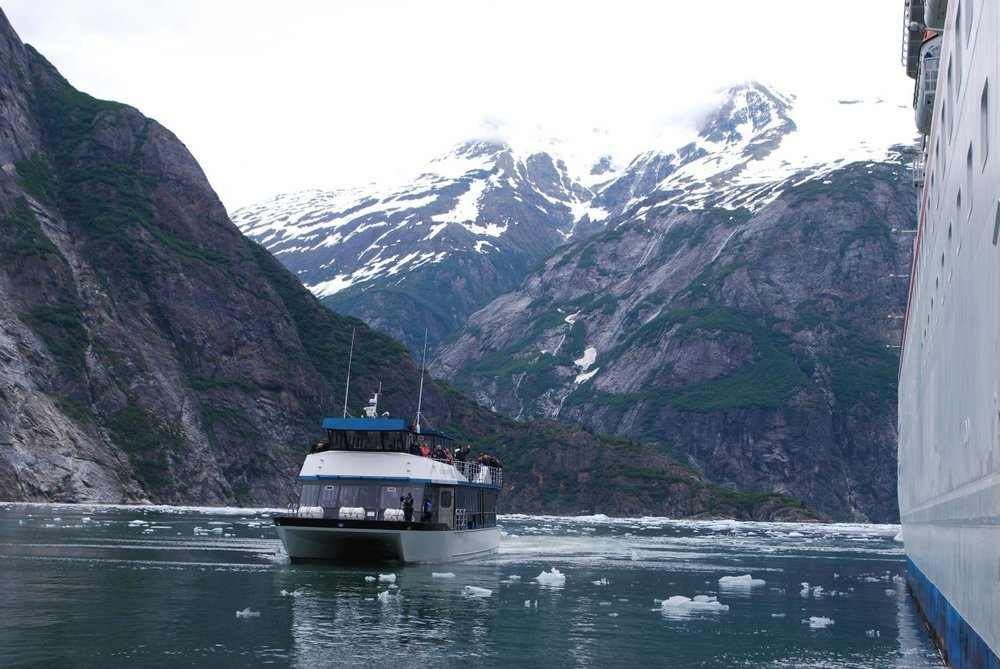 tracy-arm-fjord-and-glacier-explorer-ketchikan-ak-1.jpg