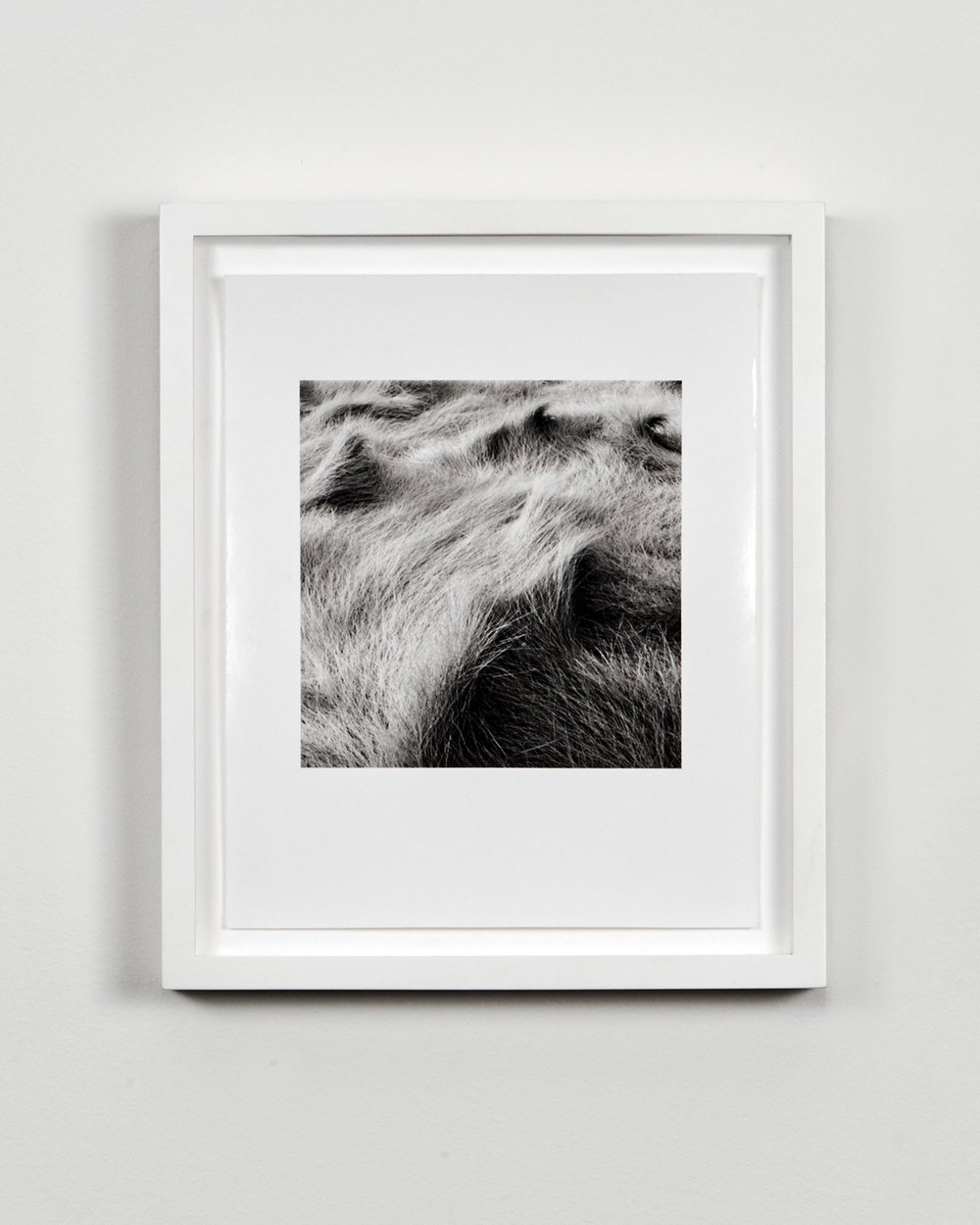 Eric Lindbloom silver gelatin photograph in lacquered white frame
