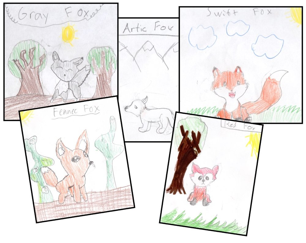 foxes-dens.jpeg