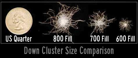 Cluster comparison -