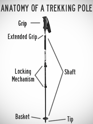 Anatomy of a Trekking Pole -