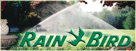 rainbird-header.jpg