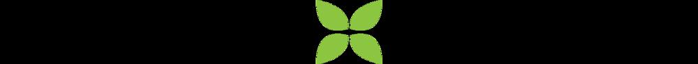 ivy-flower_strip.png