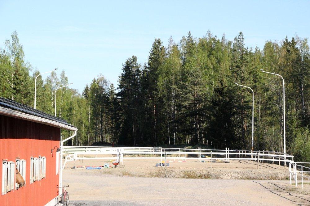 Hevosten koulutus, ratsutus ja Equitron hoidot   Tarttila