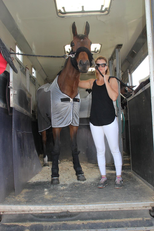 Hevosten koulutus | Tarttila, Valkeakoski