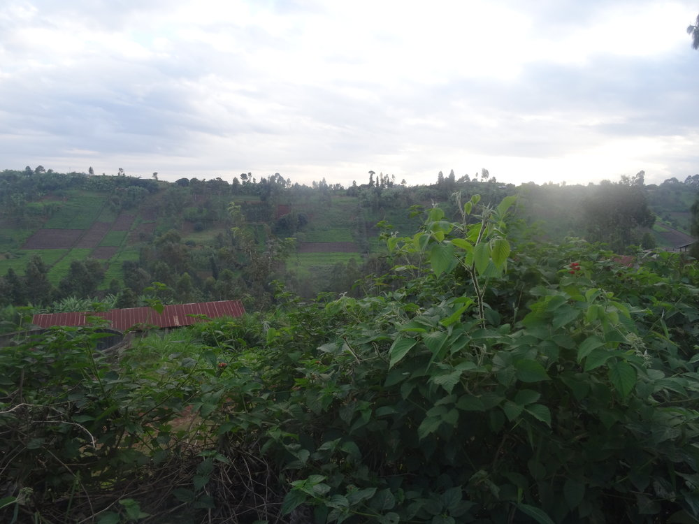 Rural Thika.JPG