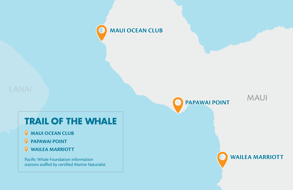 Trail of the Whale 2018_Map-R2-01.png