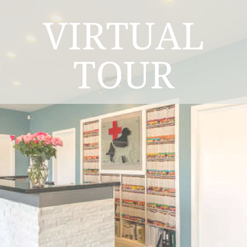 Virtual Tour 1.png