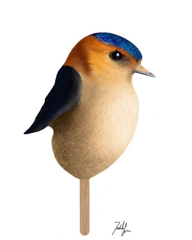 Popsicle Bird - Svale ⭐️ - - - -#vintage #vintagebirds #homedecor #interiordesign #interior #indretning #boligindretning #bolig #plakat #kunstplakat #danskdesign #danishdesign #wallart #københavn #posterdesign #posterart #scandinaviandesign #nordic #livingroom #indretningstips #fugle #jakobsargin #popsiclebird #boliginspiration #creative #original
