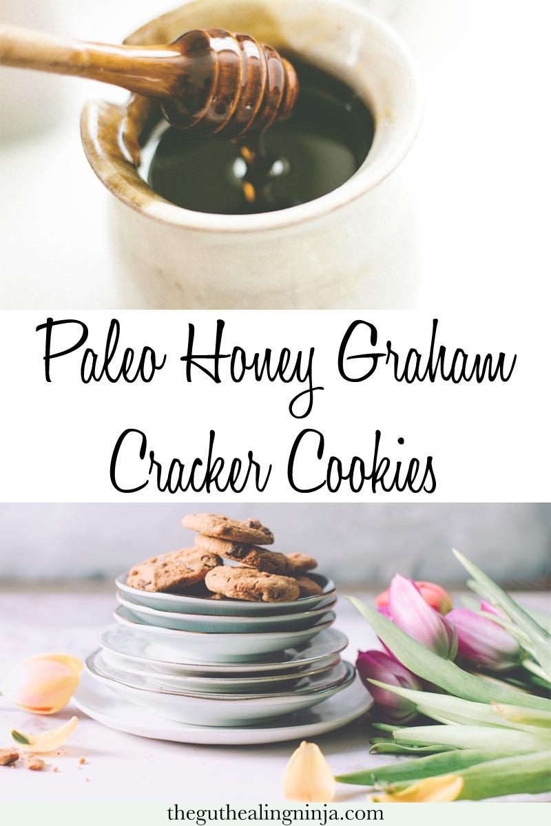 Paleo Honey Graham Cracker Cookies - The Gut Healing Ninja
