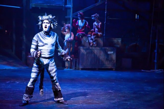 Anthony George  (Munkestrap) and  Jellicle Cats