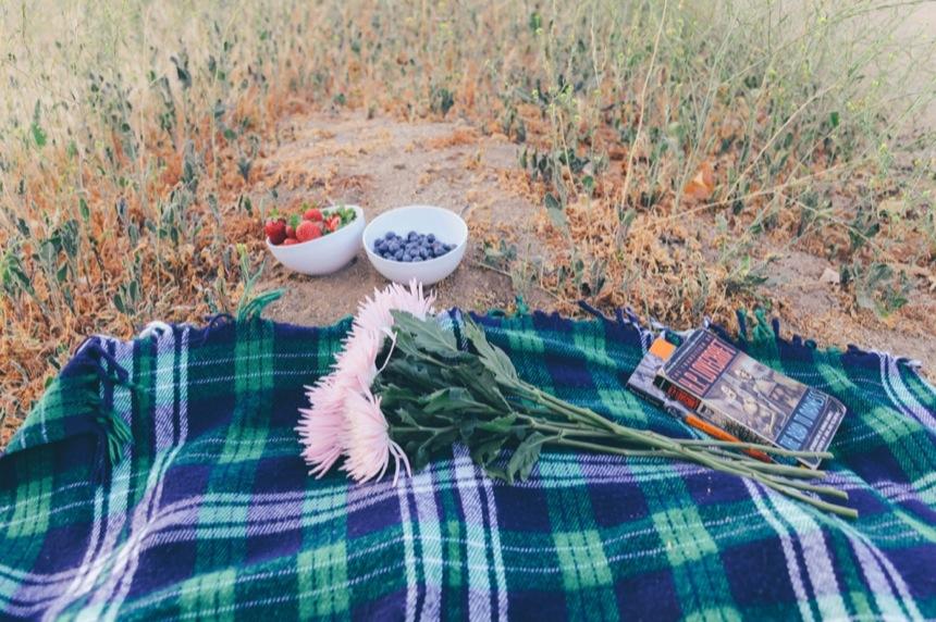 Griffith Park Engagement 12