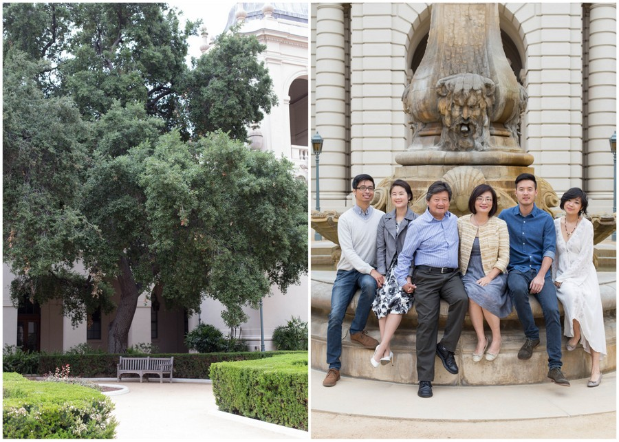 Edited-Collection.jpg