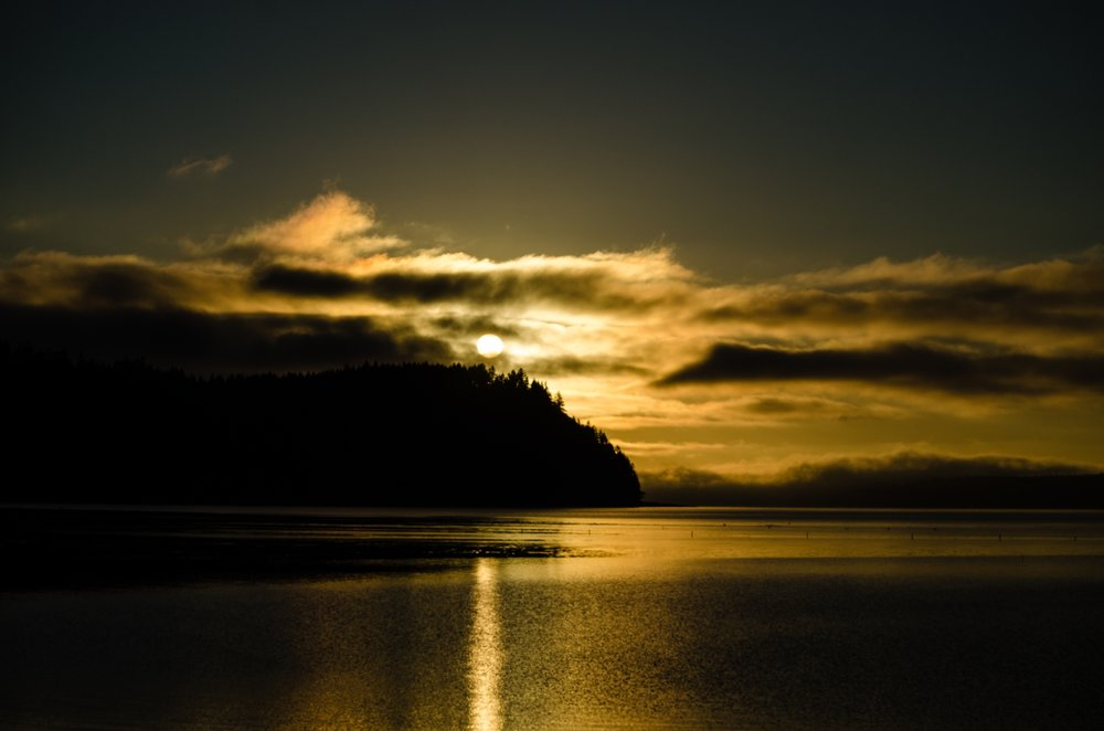 Moon Over Hood Canal  by Anna Maria Wolf