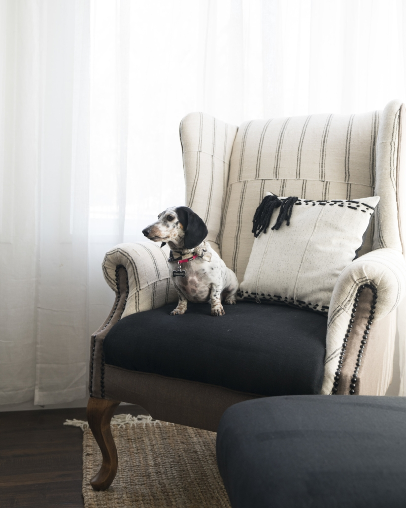 Cassidy armchair
