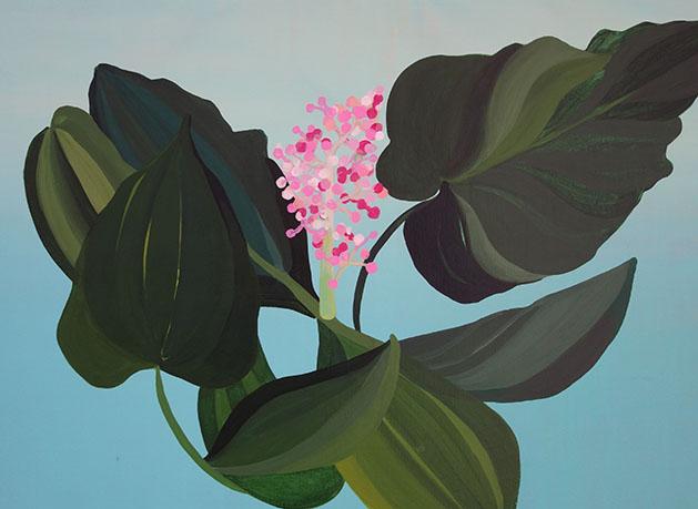 """""""Morning Plant""""   Javiera Da Fonseca"""