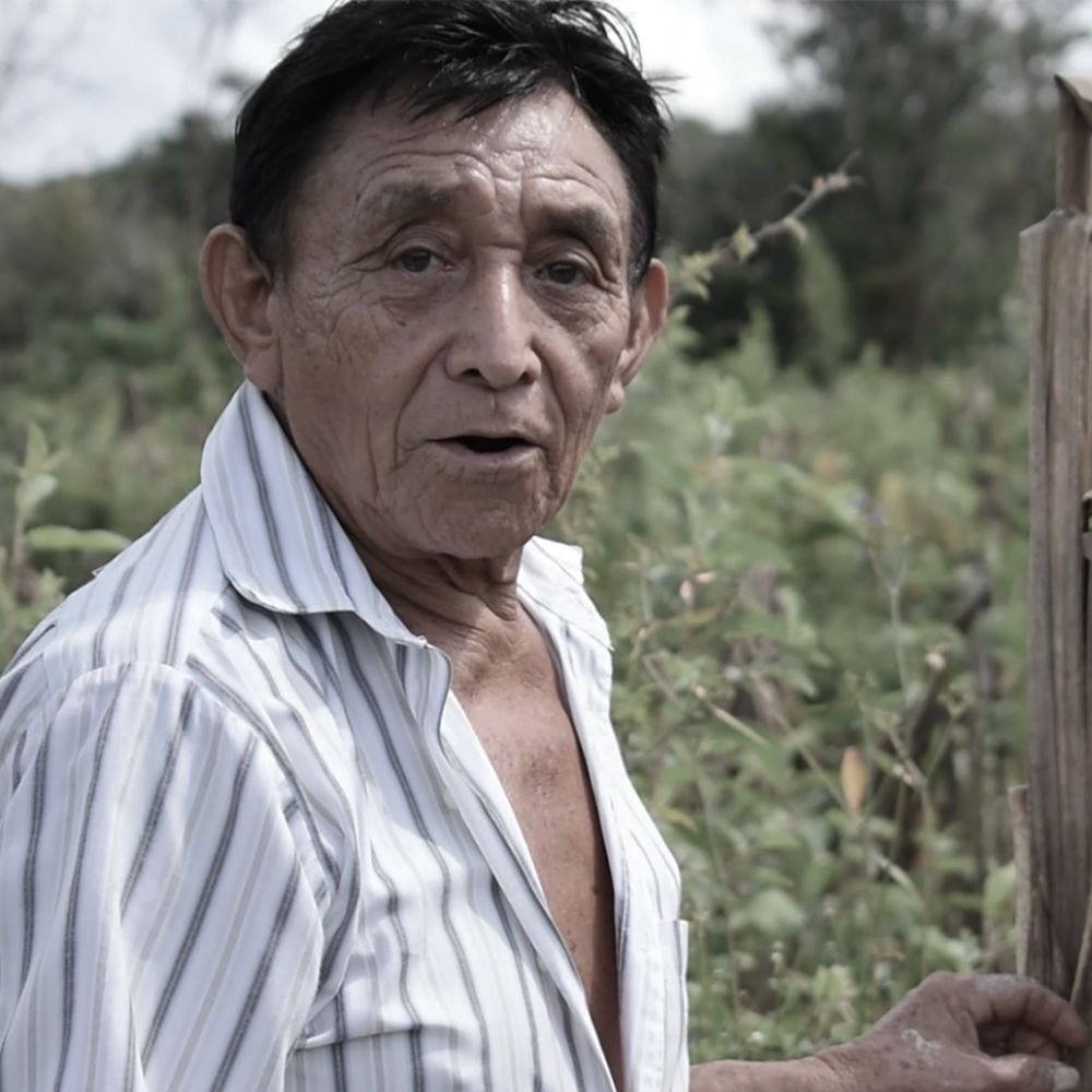 """An 81-year-old Maya grandfather, declared Living Human Treasure of the State of Yucatan, has preserved the traditional ceremonies of the Mayan people, fostering the spiritual and cultural development of his community Xocen, Valladolid, that is popularly called """"the center of the Mayan world"""". He will present Mayan ritual facilities of a real nature, to demonstrate how to make offerings to some beings of nature and also to some Mayan gods of vital importance."""