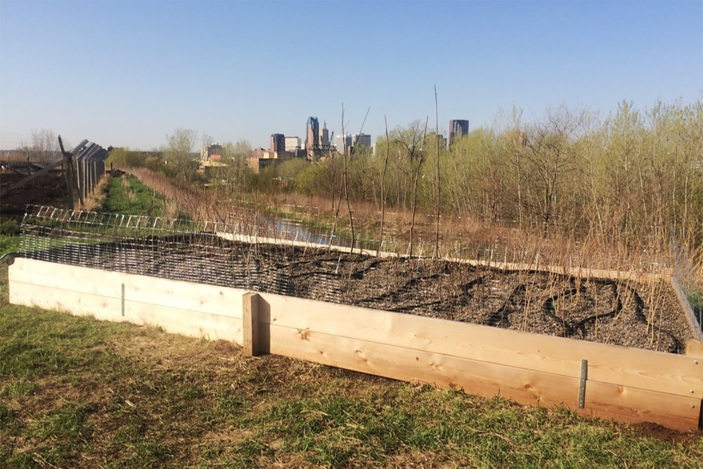 Urban Roots MN partnered with us to install this gravel bed tree nursery in Saint Paul.