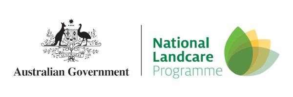 nlp-logo-rgb.jpg