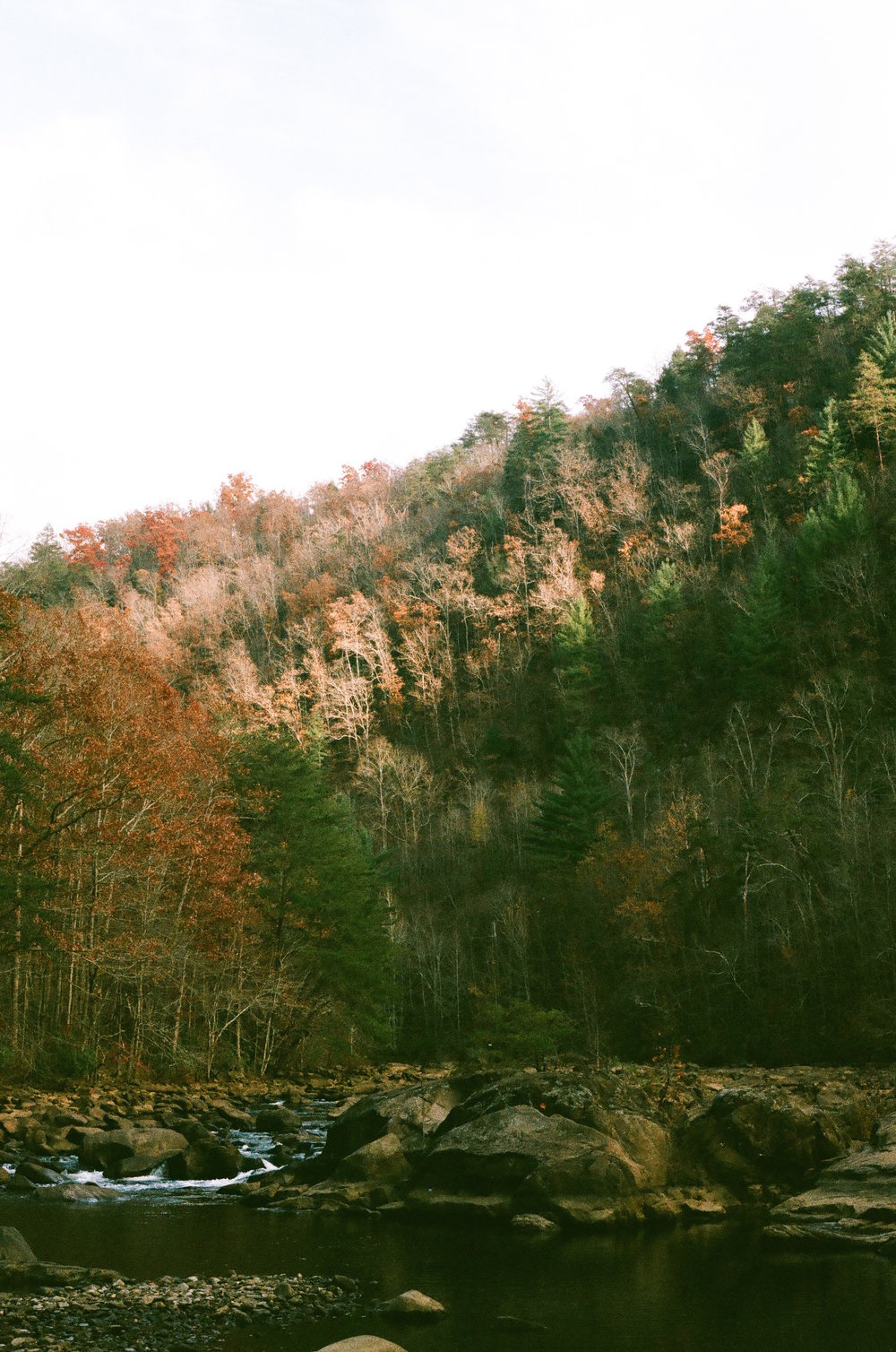 North Georgia, 2016.
