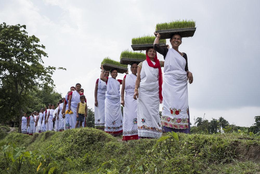 ConorAshleigh-©2017-Nepal-webres-152.jpg