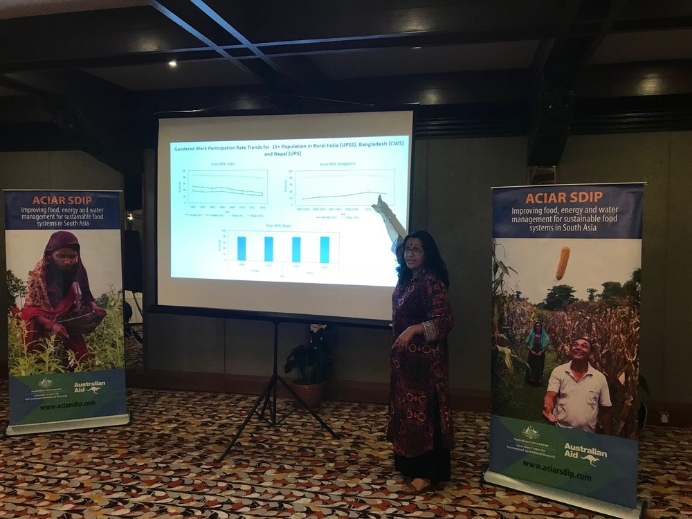 Professor Sucharita Sen presents the results of a study into women's engagement in agriculture in the EGP.