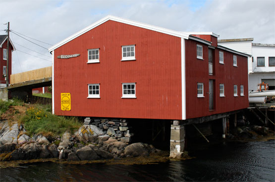 Foto : Alf Håvard Iversen