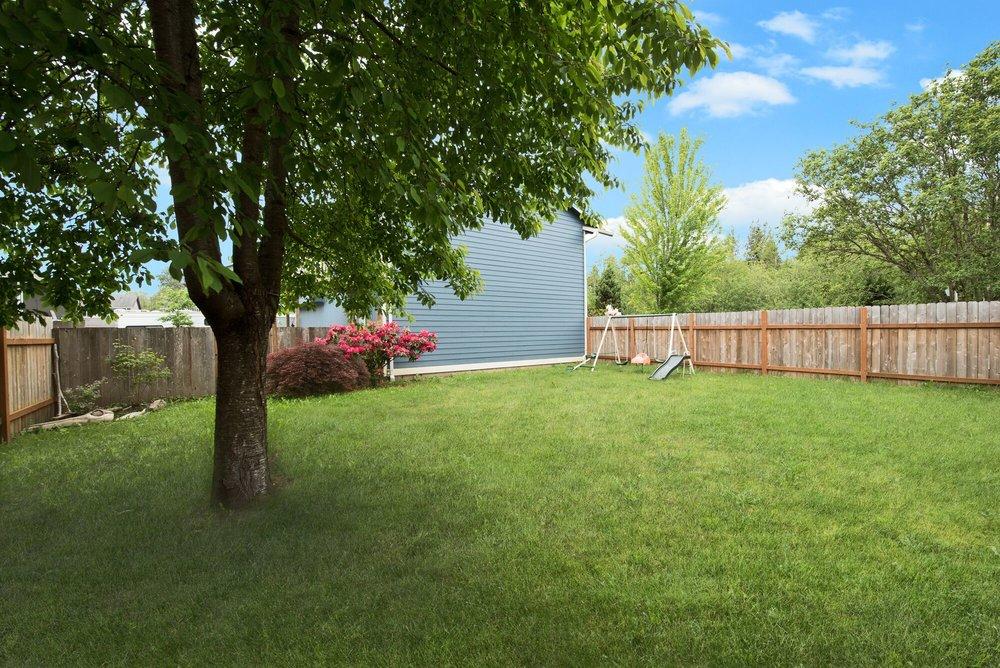 15b-backyard-2_preview.jpeg