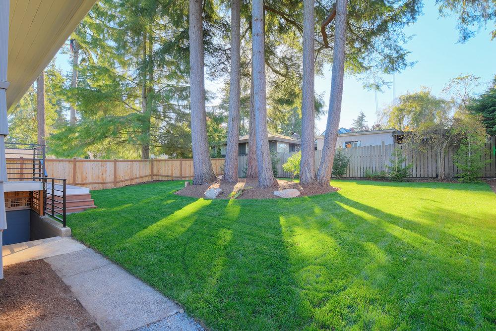 17d-backyard.jpg