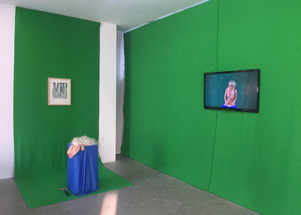 """Ausstellungsansicht """"Ist es immer grüner da drüber oder blauer hinter der Mauer?"""""""
