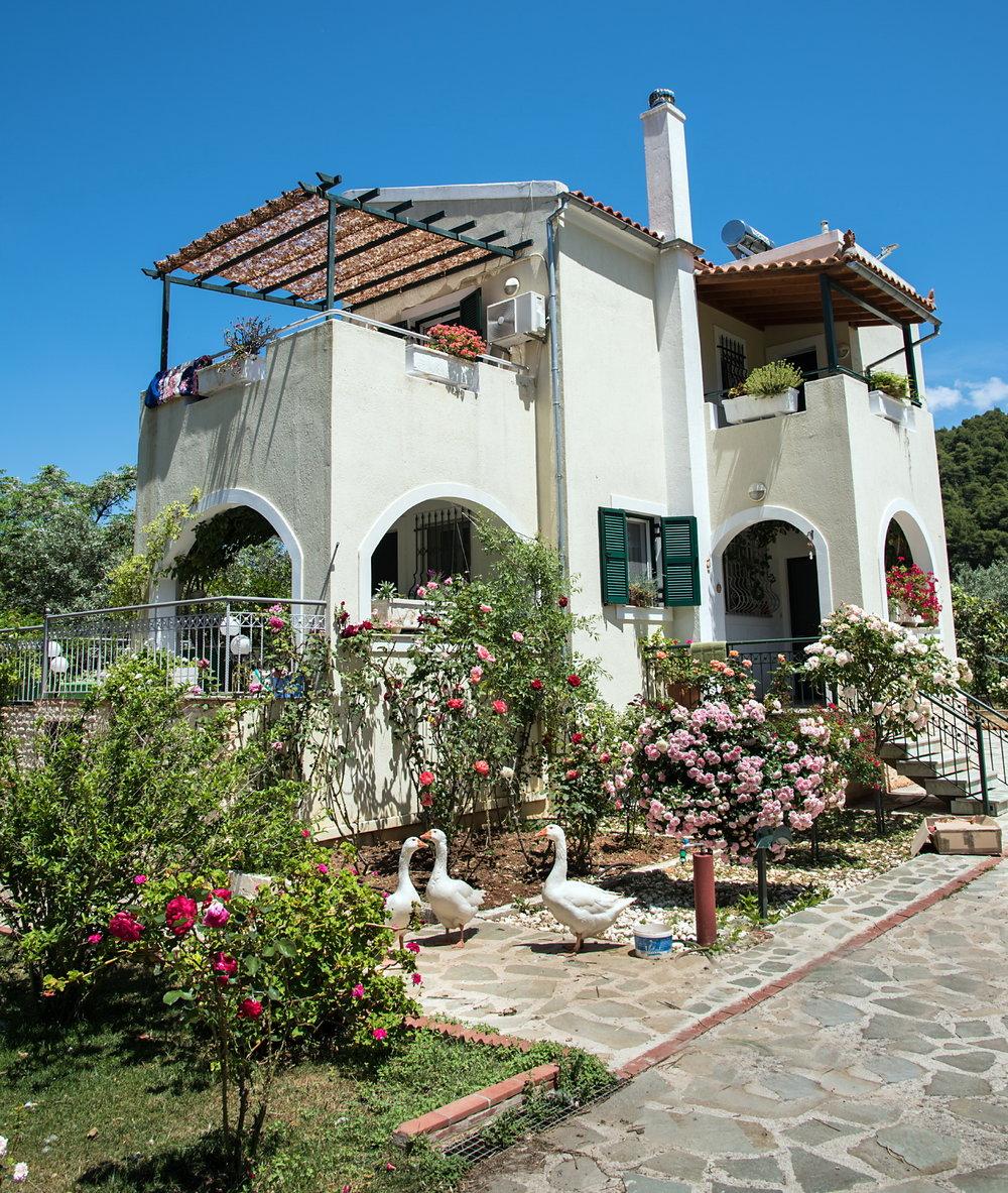 villa loutsa 6.jpg
