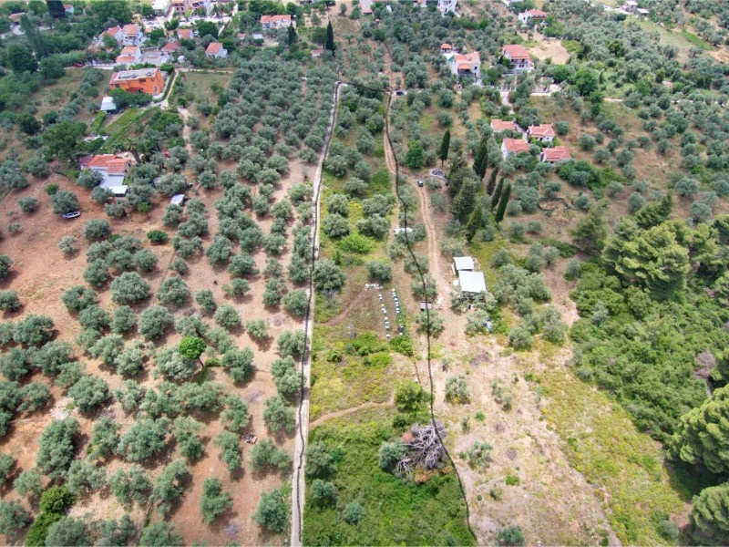 Partly build able land in Stafylos    Property number 308    Price: euro 90.000     Read more